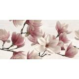 Rhea Magnolia